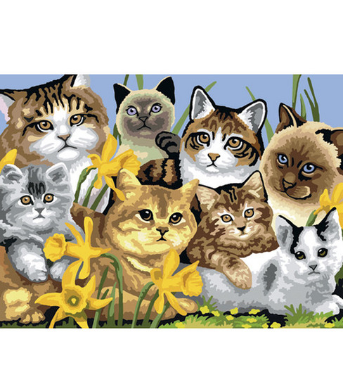 "15-1/4""x11-1/4"" Junior Paint By Number Kit-Cats Montage"