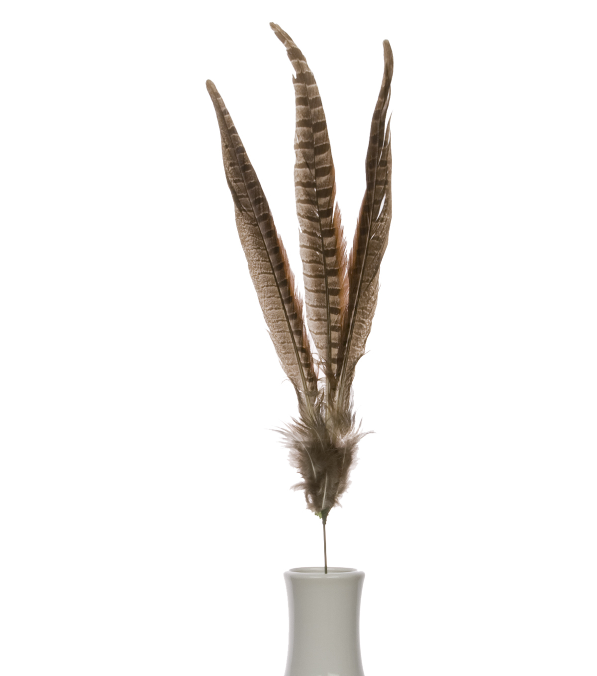 Bloom Room 27\u0022 Pheasant Feather Floral Spray-Brown