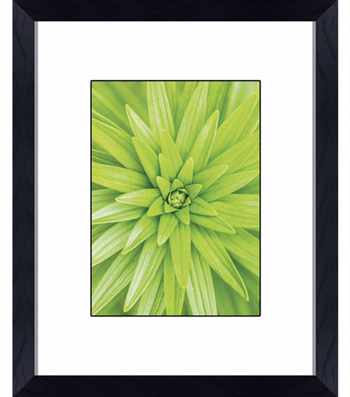 Wall Frame 8x10 Regal Frame-Black
