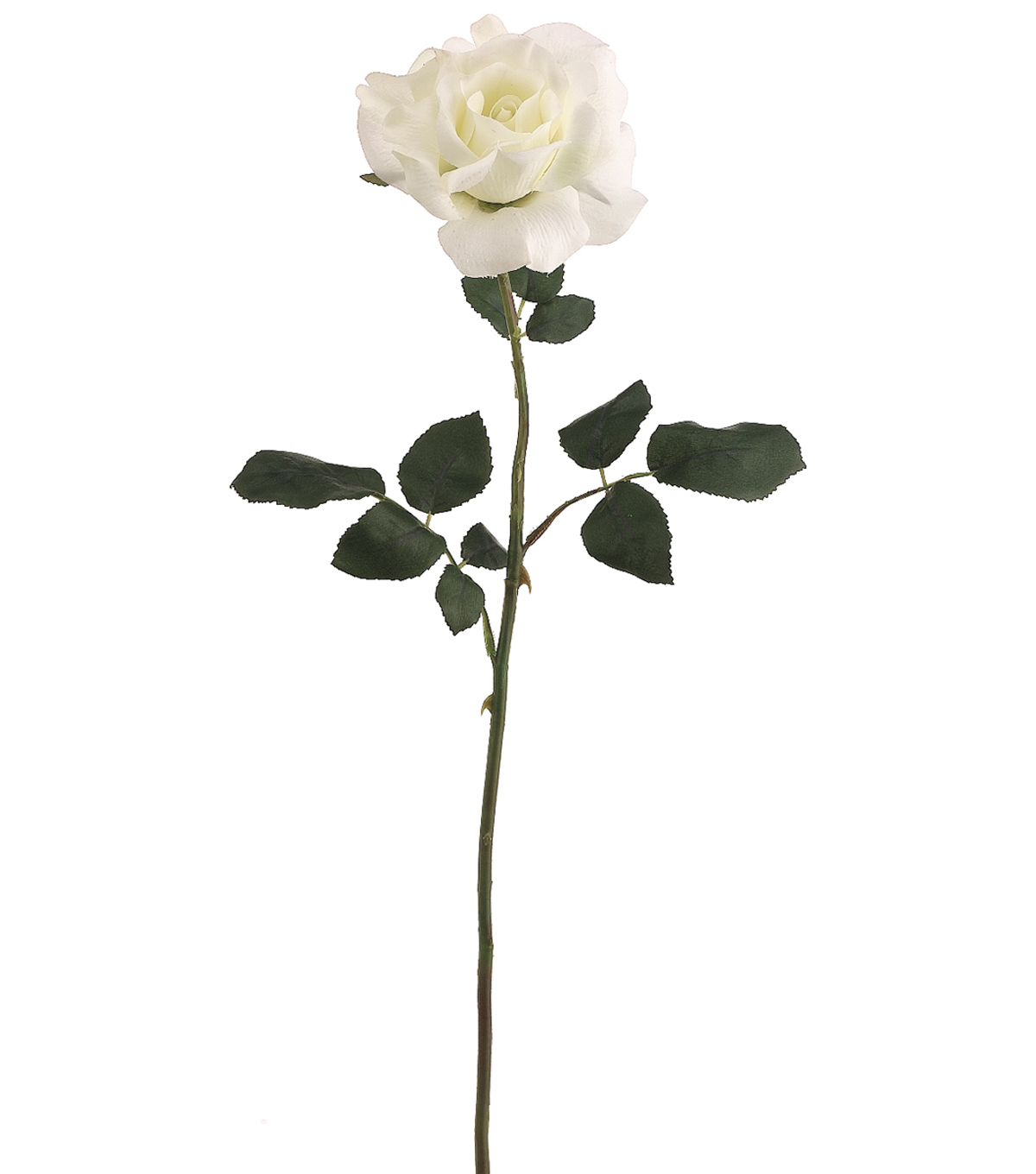 Bloom Room 26\u0022 American Beauty Rose Stem-White