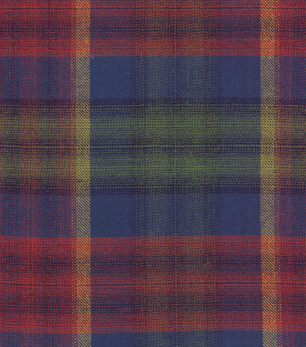 Waverly Upholstery Fabric 56\u0022-Tartan Terrain/Evening