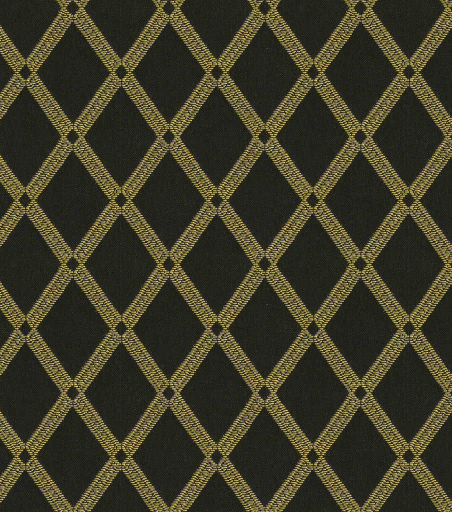 "Home Decor Print Fabric 54""-Richloom Studio Bavley Onyx"