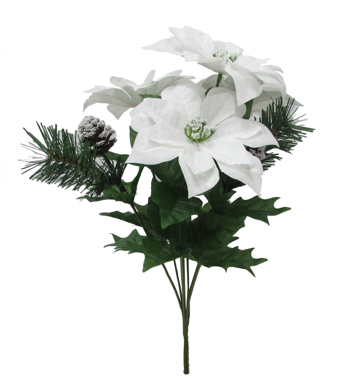 Blooming Holiday Poinsettia & Pine Mixed Bush-White