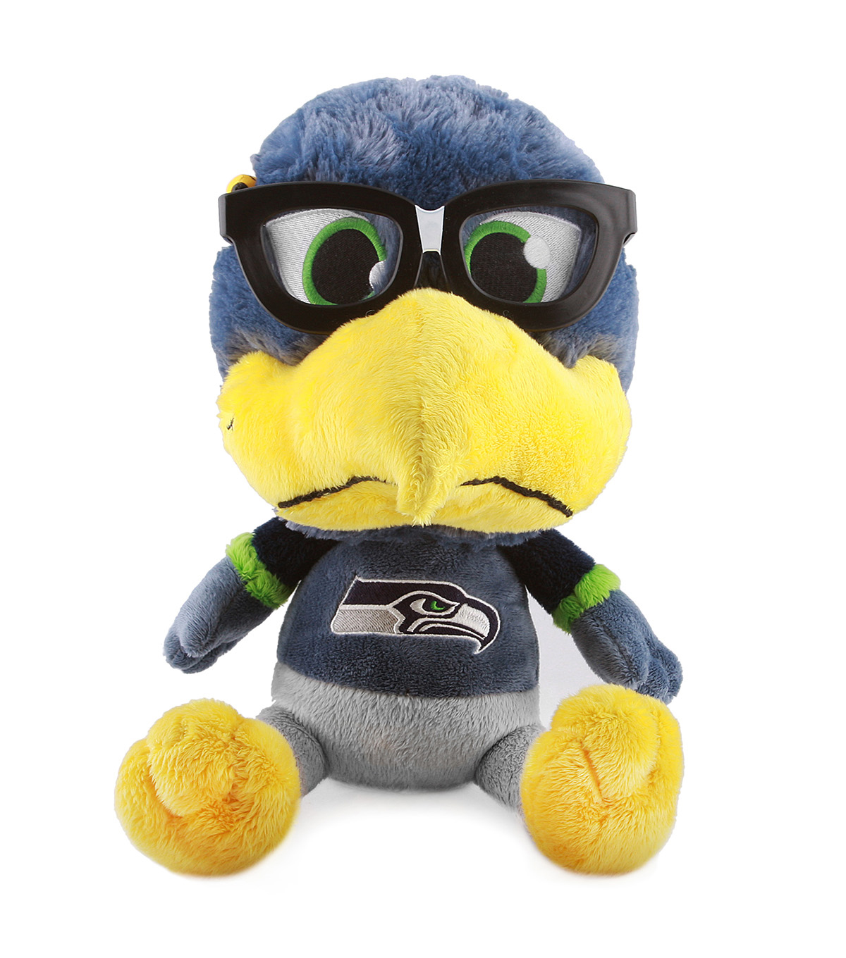 Seattle Seahawks Study Buddy