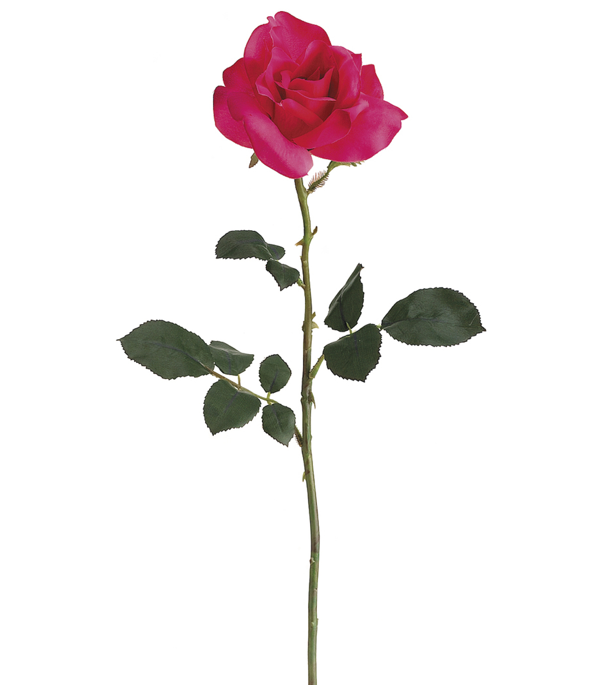 "Bloom Room 26"" American Beauty Rose Stem-Pink"