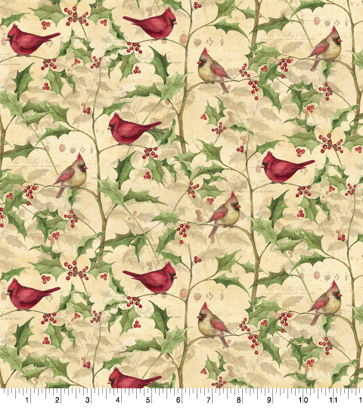 Susan Winget Cotton Print Fabric 43''-Cardinal on Vines
