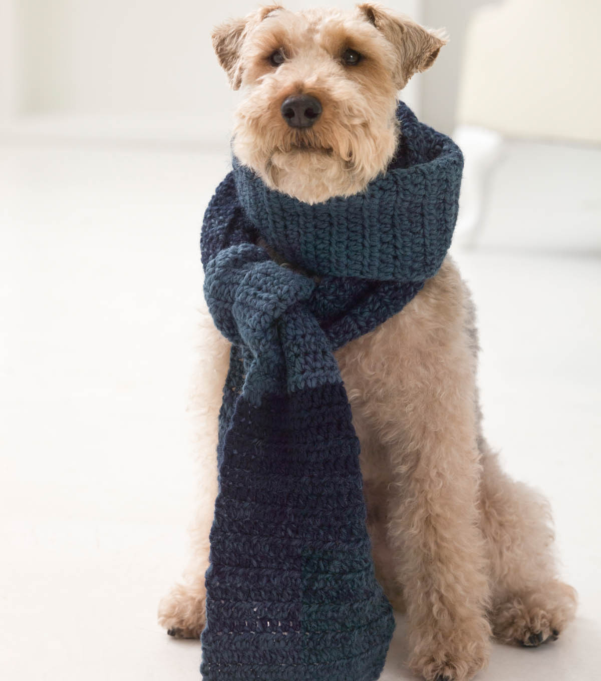 One Ball Pet Crocheted Scarfie