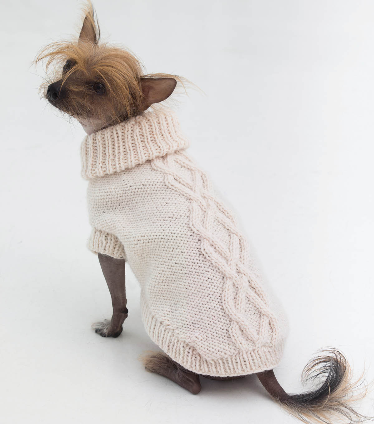 The Prep Dog Sweater
