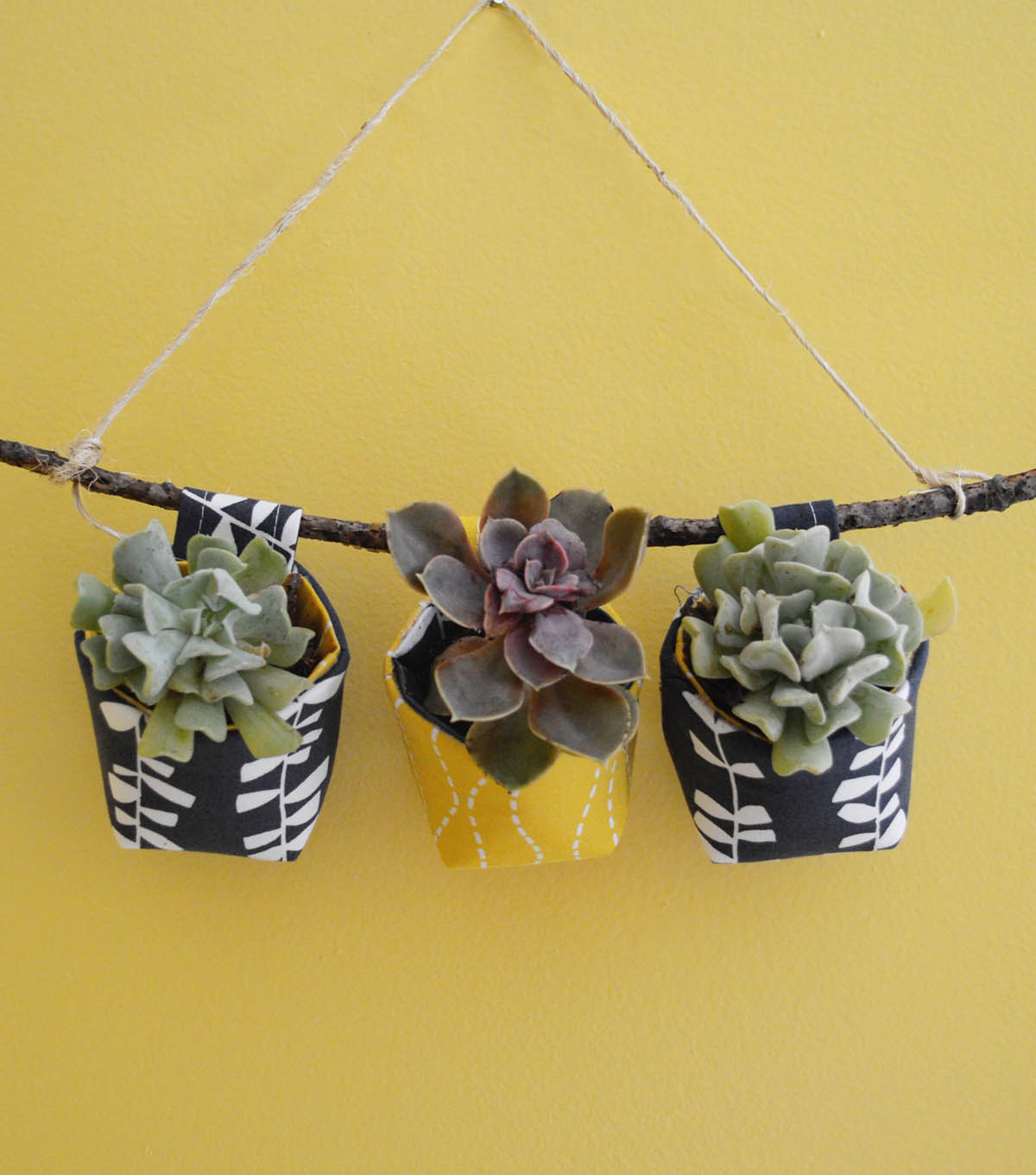 How To Make Succulent Wall Planters