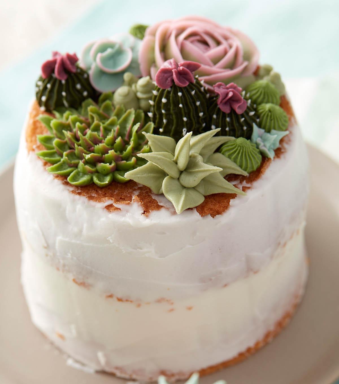 Cake Icing Supplies