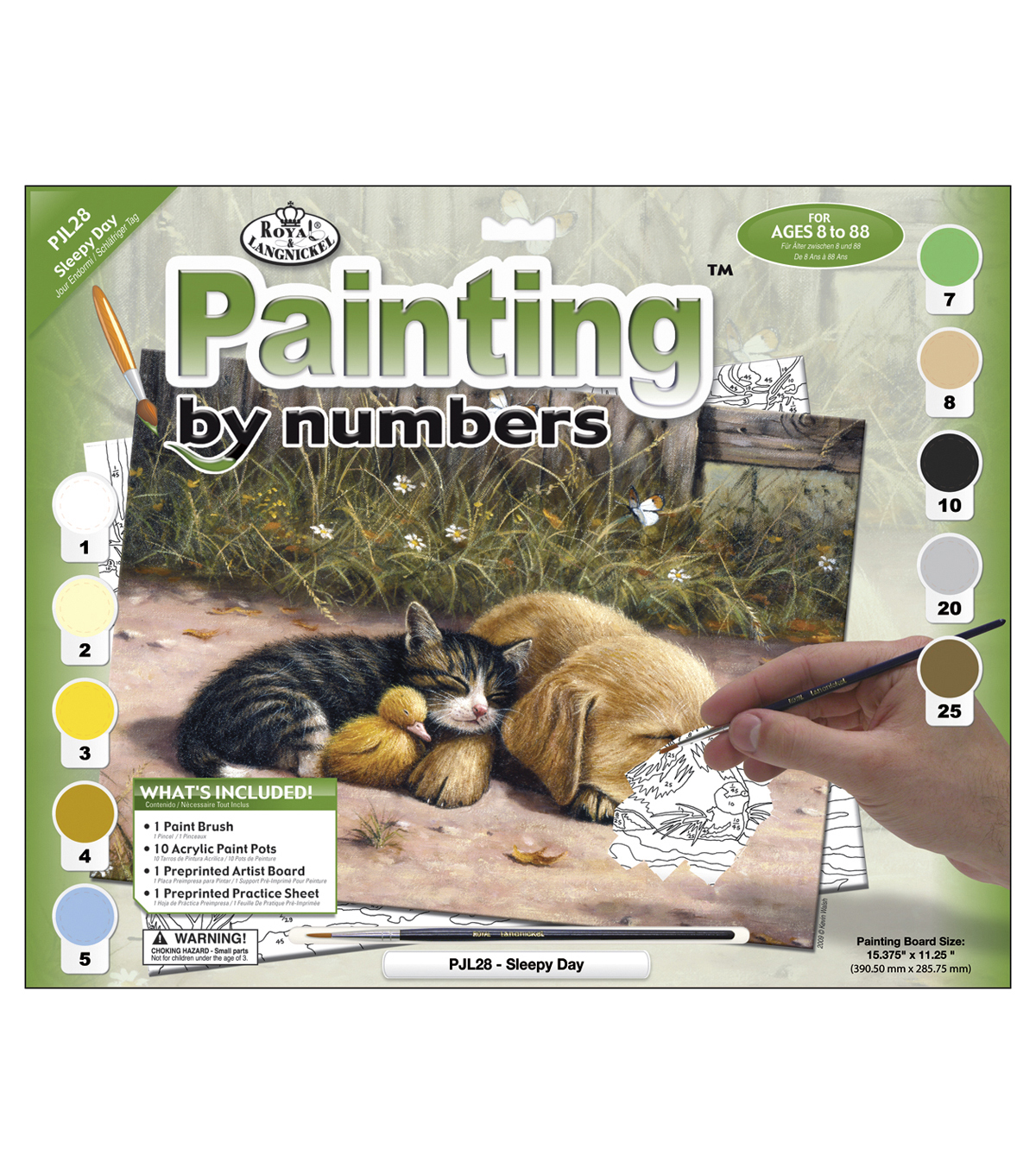"""15-1/4""""x11-1/4"""" Junior Paint By Number Kit-Sleepy Day"""