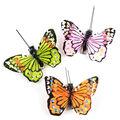 Feather Glitter Monarch Butterfly 2.5\u0022 Asst-3 pc