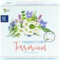 Buzzy Fragrant Flower DIY Terrarium Complete Grow Kit
