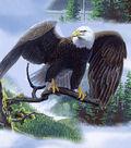 Anti-Pill Fleece Fabric -Wild Eagles