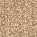 Eaton Square Multi-Purpose Decor Fabric 54\u0022-Otho/Sand