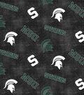 Michigan State University Spartans Flannel Fabric 42\u0022-Distressed Logo