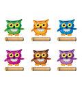 Trend Enterprises, Inc. Bright Owls Variety Pack, 72 Per Pack, 3 Packs