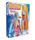 Smartlab You Explore It Human Body