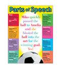 Parts of Speech Learning Chart 17\u0022x22\u0022 6pk