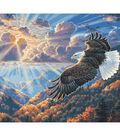 Plaid Creates Classic 16\u0027\u0027x20\u0027\u0027 Paint by Number Kit-Eagle Freedom