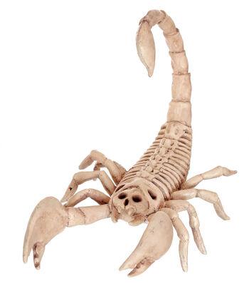 The Boneyard Scorpion Bones
