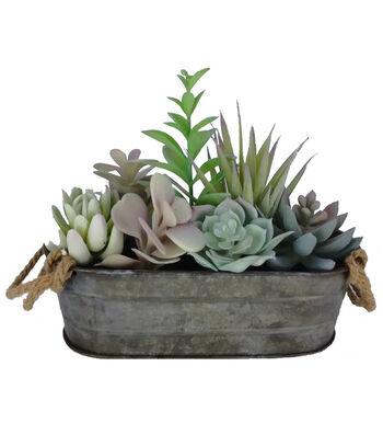 Bloom Room 7'' Succulent Arrangement in Tin Container