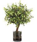 Button Leaf Tree & Organic Soil in Glass Vase 20\u0027\u0027-Green