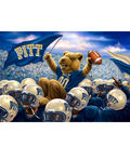 University of Pittsburgh Fleece Fabric Panel 60\u0022-Stadium Helmets