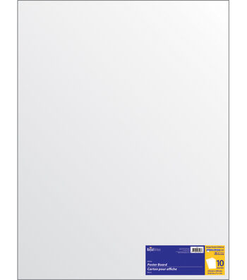 "22""x28"" Poster Board 10ct-White"