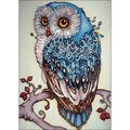 Collection D\u0027Art Diamond Embroidery/Printed/Gem Kit 27X38cm-Owl