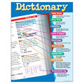 Dictionary Learning Chart 17\u0022x22\u0022 6pk