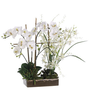 Bloom Room Luxe 26'' Orchids In Ceramic Dish-White