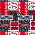 Cleveland Indians Cotton Fabric-Winter