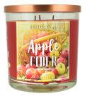 Hudson 43 Candle & Light 14 oz. Apple Cider Scented Jar Candle