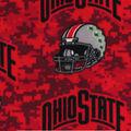 Ohio State Buckeyes Fleece Fabric -Helmets on Red