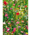 Flower Field Wall Mural
