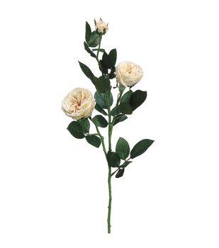 """Bloom Room 29"""" Garden Rose Spray-Cream"""