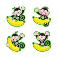 Monkeys and Bananas Mini Accents Variety Pack, 36 Per Pack, 6 Packs