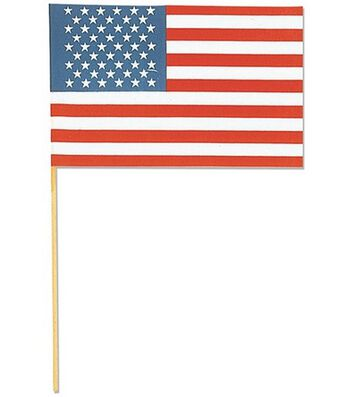 "American Flag 6""X9""-1PK"