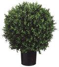 Bloom Room Luxe 23\u0027\u0027 Ball-Shaped Boxwood Topiary-Green