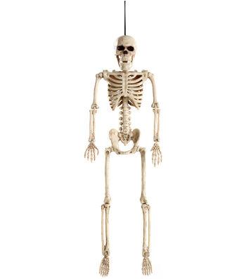 The Boneyard Halloween 16'' Skeleton Bones