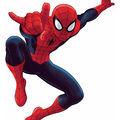 York Wallcoverings Peel & Stick Wall Decals-Ultimate Spiderman
