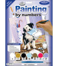Royal Langnickel Junior Paint By Number Kit The Mail Menace
