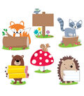 Woodland Friends  10in Cut Outs 12/pk, Set of 3 Packs