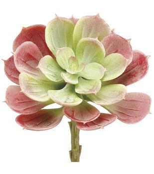 Bloom Room 6'' Soft Echeveria Pick-Green & Red
