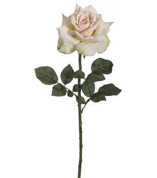 "Bloom Room 26"" Diana Rose Stem-Apricot Green"