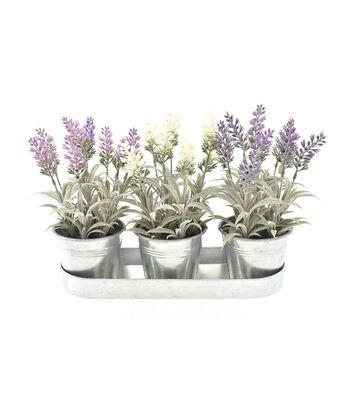 Fresh Picked Spring 10'' Lavender in Galvanized Pots