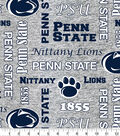 Penn State Nittany Lions Fleece Fabric-Heather Verbiage