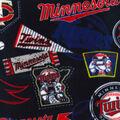 Minnesota Twins Fleece Fabric-Vintage