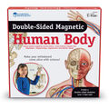 Double-sided Magnetic Human Body Set, 17 Pieces